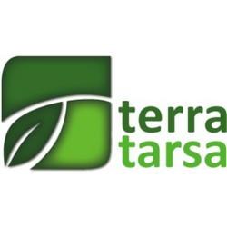 Doktor Tarsa (Турция)