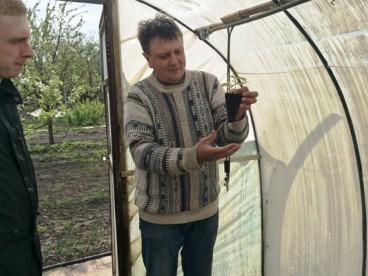 Садовник Вагин Олег - отзывы о продукции Арокс Кроп